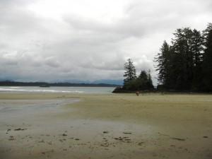 Paysage typique de plage