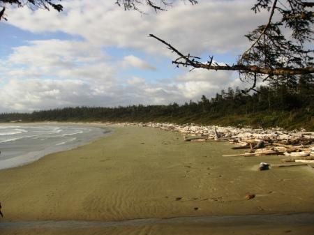 "La plage ""Long Beach"""