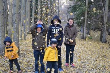 Vive l'automne 1