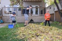 Ramassage de feuilles
