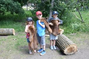 Aprèm en forêt, une peau de castor chacun. Très fiers de nos petits trappeurs !