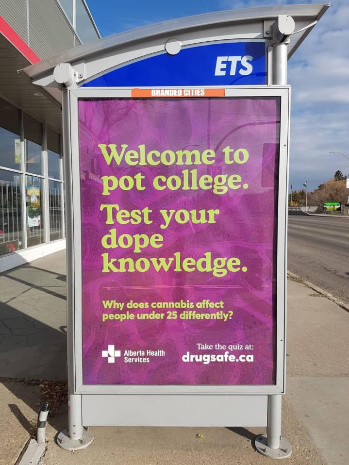Apprenez des choses même en attendant le bus !